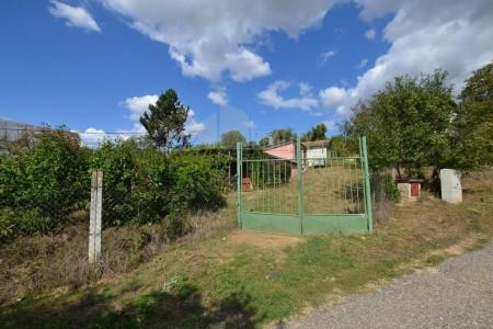 Na predaj viničný dom Levice - 7005354_11_84925293c5730b9d238c920f4078caa4