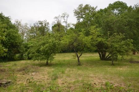 Rodinný dom v Kalinčiakove s pekným pozemkom - DSC_0137_acfb8705cc260a182fc476ab72387a91