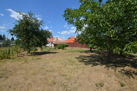 Rodinný dom na predaj v Leviciach, Rezervované - DSC_0642_cac4d935e8aed25be527327229bcb03b