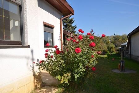 Priestranný rodinný dom v obci Veľký Ďur časť Rohožnica - DSC_7512_ddebad1dd722804c8697077b819c5877