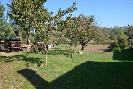 Priestranný rodinný dom v obci Veľký Ďur časť Rohožnica - DSC_7513_1_546062b2e6d9c524fba854d3c36cd43f