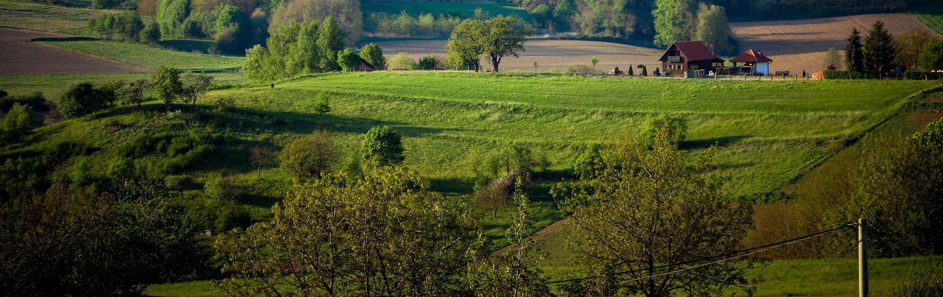 Pozemky na predaj / Levice a okolie